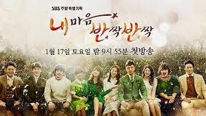 Biodata Pemain Drama Korea My Heart Twinkle-Twinkle