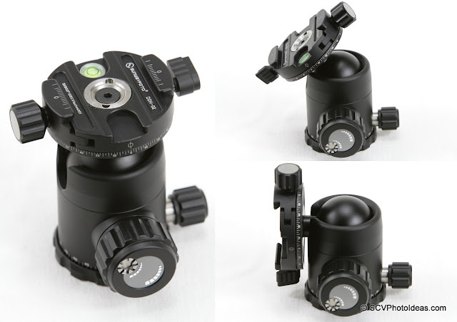 Sunwayfoto FB-36DDH Ball Head pan clamp and positioning