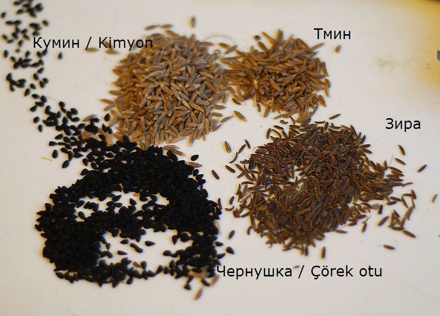 Как вырастить тмин из семян в домашних условиях - Dubrava-don.ru