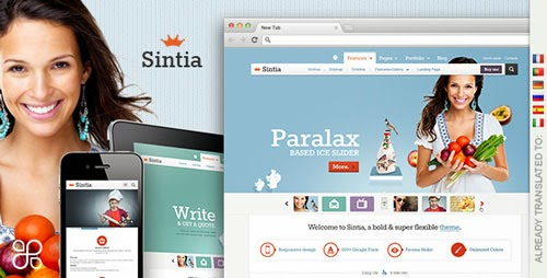 Sintia Responsive for Business Portfolio Version 3.0 free