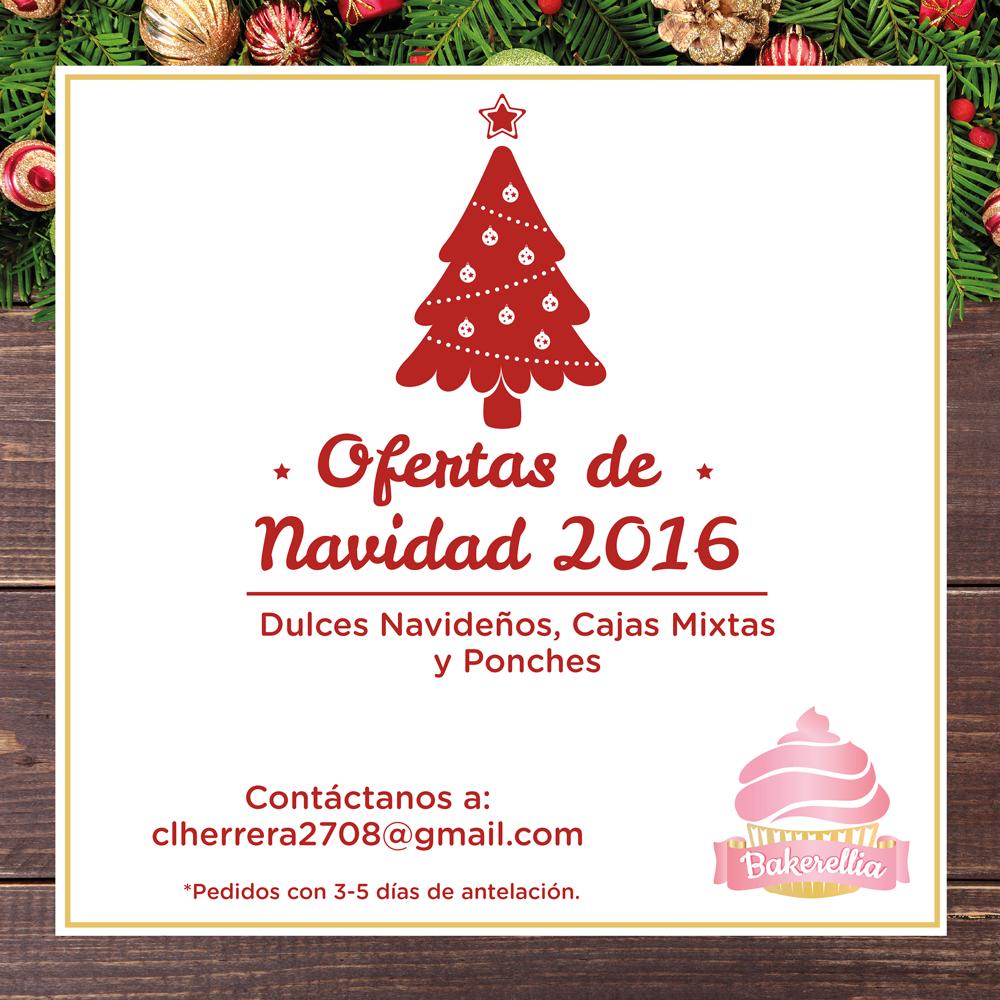 OFERTAS DE NAVIDAD 2016 - 809 303 9147