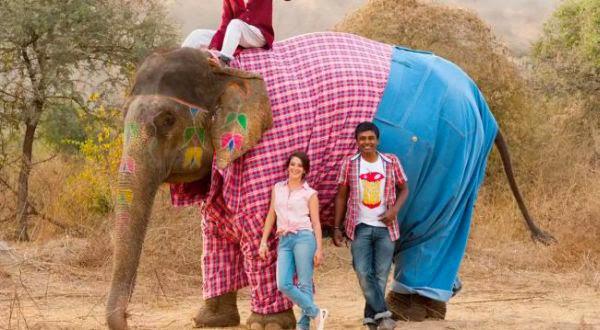 Gajah Pakai Baju dan Celana, Hebohkan Dunia Maya