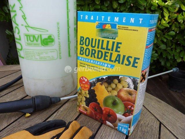 Ren capo plaidoyer pour une plan te propre for Bouillie bordelaise piscine