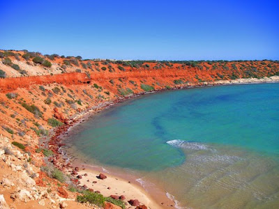 Playa multicolor - Australia Shark Bay, Costa Este
