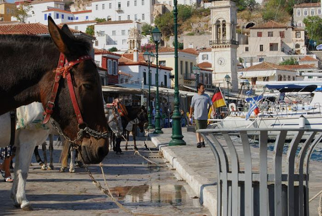 Donkey Island - Port of Hydra