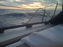 Beautiful Evening at Sea!