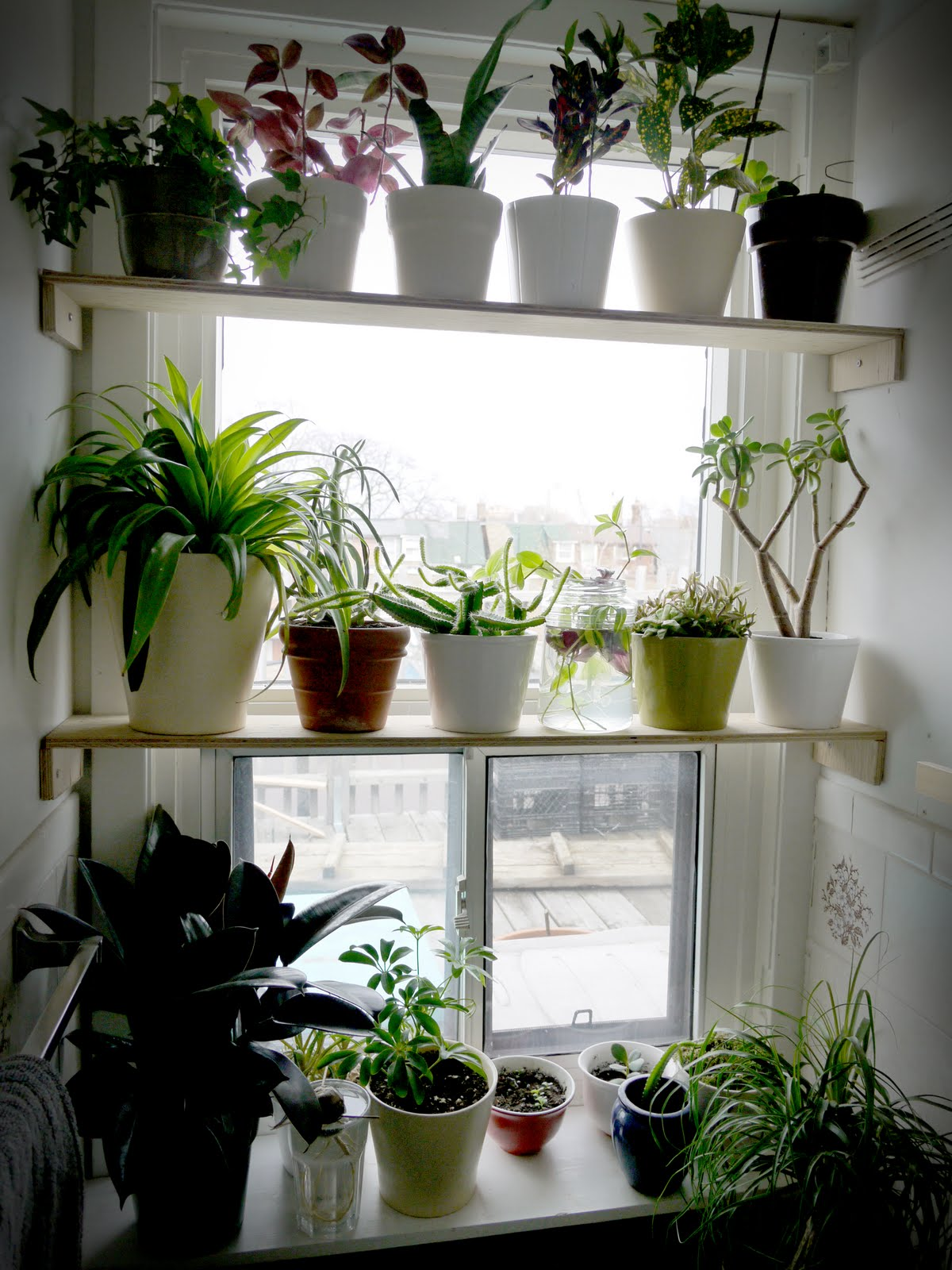 Apartment Garden on Pinterest