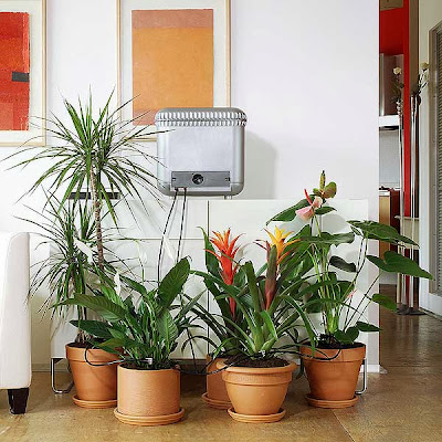 Innovative Tools and Gadgets for Plants (15) 3
