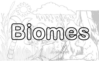 Worksheetplace biomes wednesday august 7 2013 sciox Choice Image