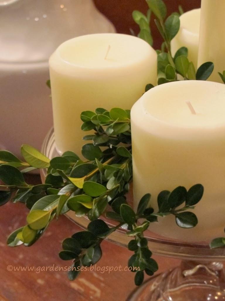 Garden Sense: Easy Advent Wreath