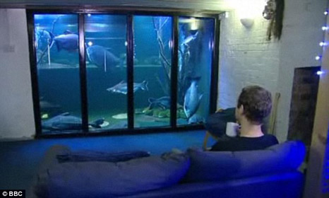 Biggest Home Aquarium In Britain By Jack Heathcote