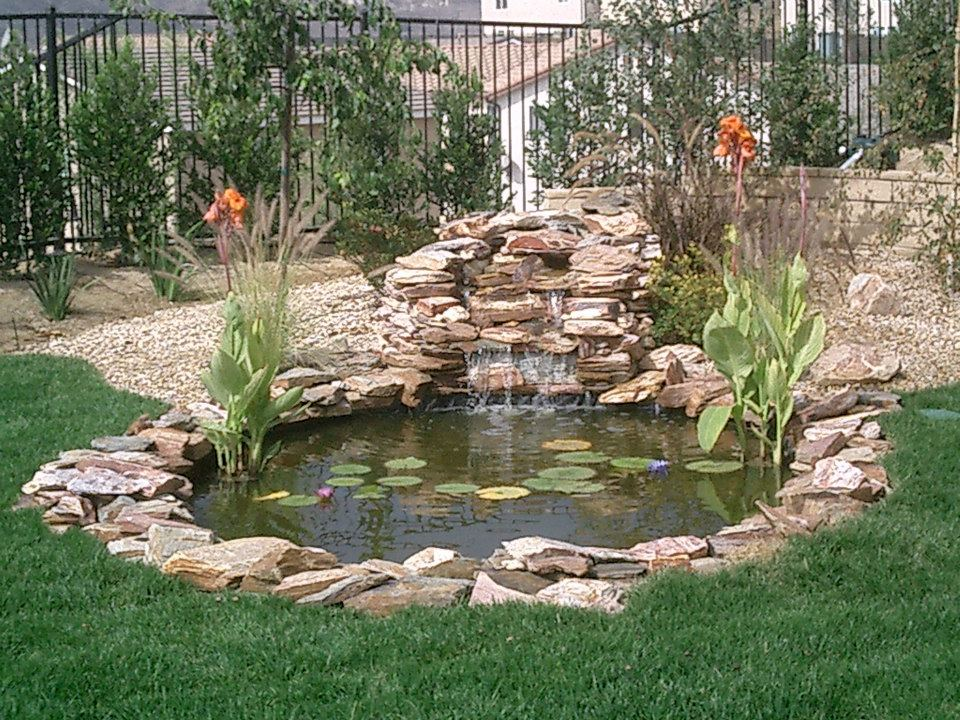 Sunland water gardens for Pond building ideas