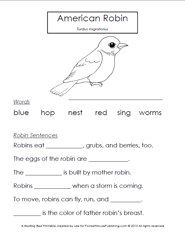 American Robin Printable Worksheet