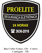 PROELITE SEGURANA 24 HORAS