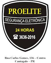 PROELITE SEGURANÇA 24 HORAS