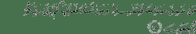 Surat Al-Jatsiyah ayat 15