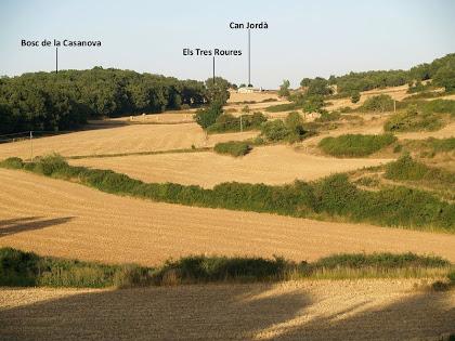 La petita vall de Can Jordà, amb la Roureda de Collsuspina i els Tres Roures, captada des del Torrent de l'Espina