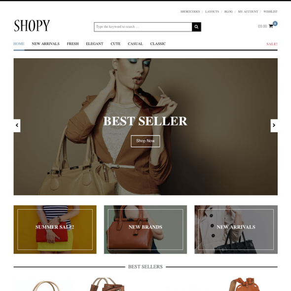Download Shopy Wordpress Themes E-commerce