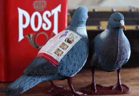 LWA The Pigeon Post