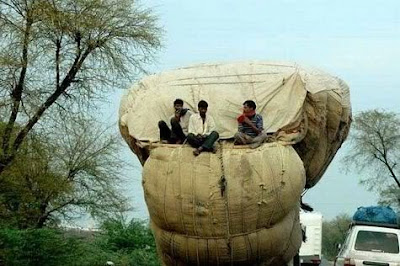 indian transport funny pic,funny pics,facebook funny pics,politics funny pics,random pics