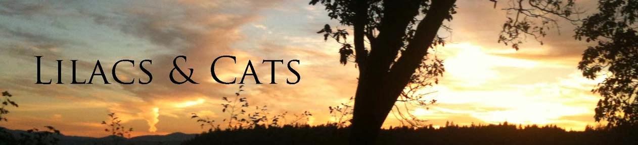 Lilacs & Cats