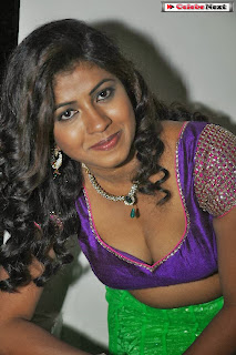 Actress Geetanjali  Picture Gallery at Oka Roju Em Jarigindi Movie Audio Launch  0100