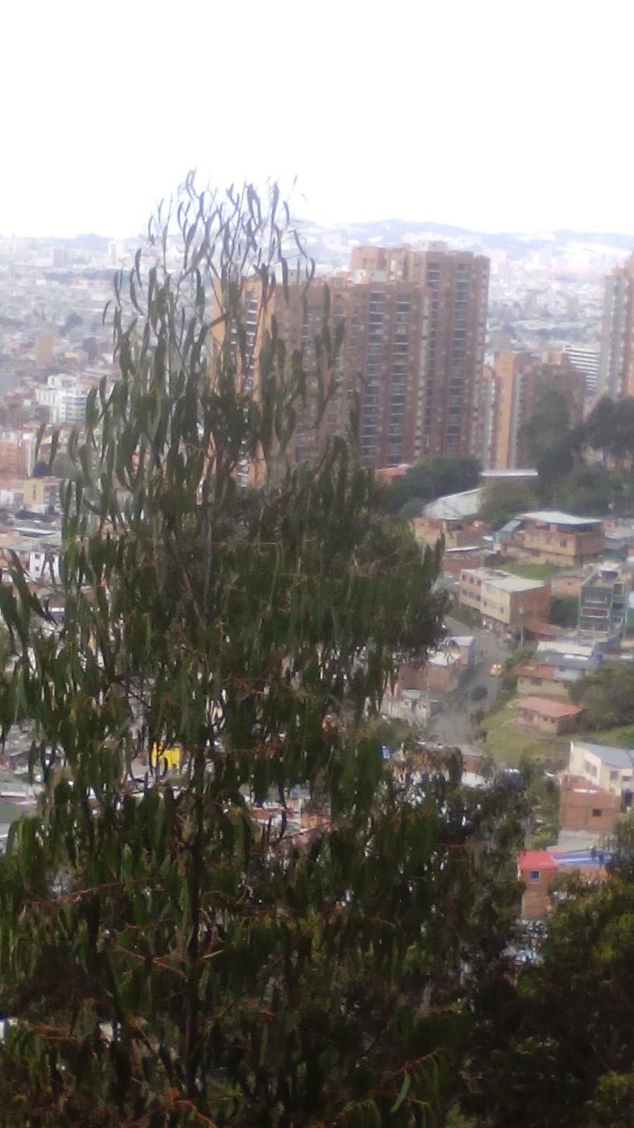 Vista de Bogotá desde la Quebrada Las Delicias