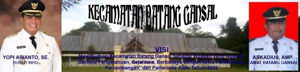 Kecamatan Batang Gansal