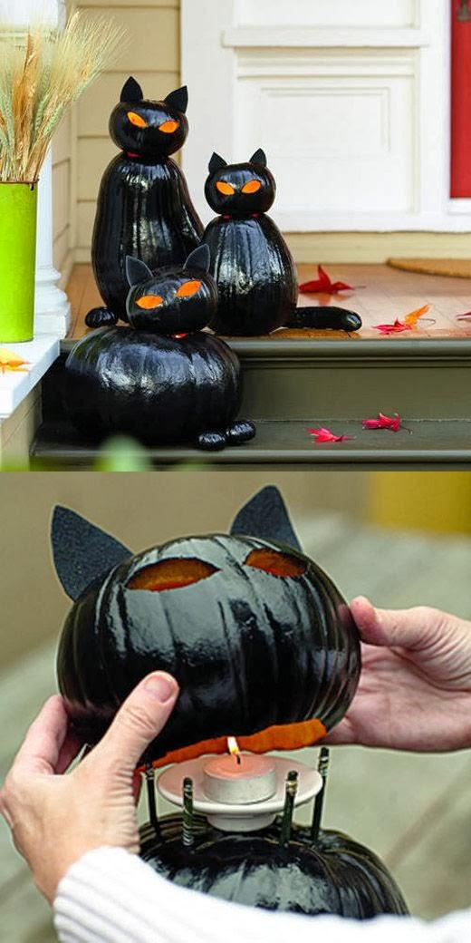 déco halloween chat citrouilles