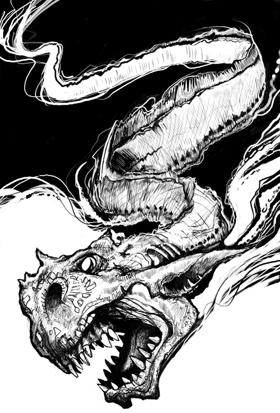 Black and white water dragon drawing