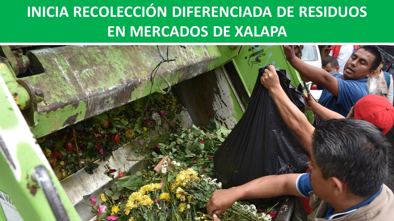 RESIDUOS EN MERCADOS DE XALAPA