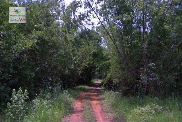 Xuyên Rừng Nam Cát Tiên đến với Làng Tà Lài