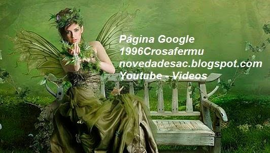 Página Google  +