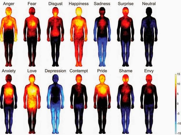 Primer mapa corporal de las emociones humanas