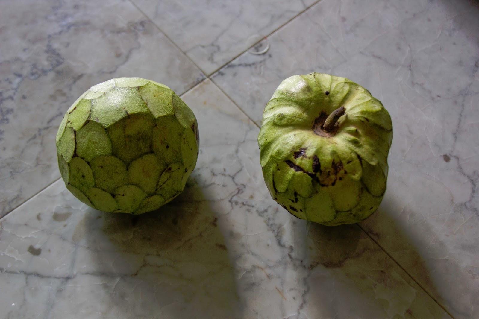 Big island living cherimoya fruit