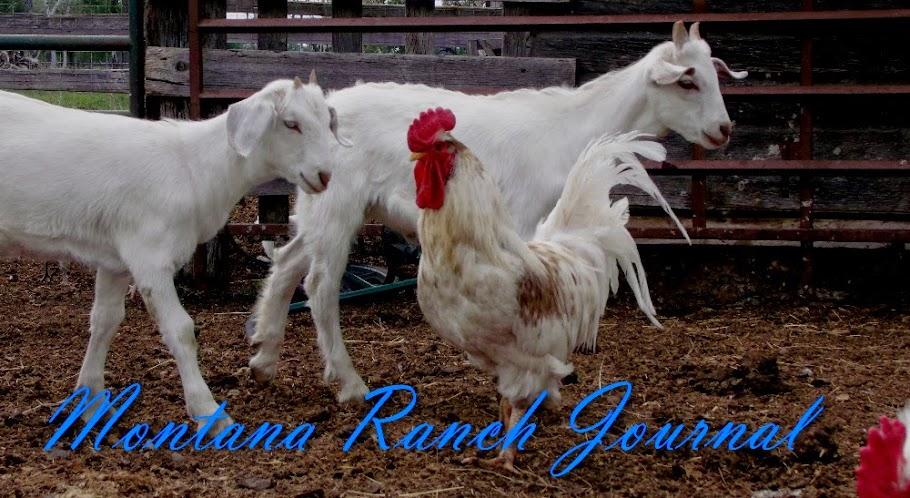 Montana Ranch Journal
