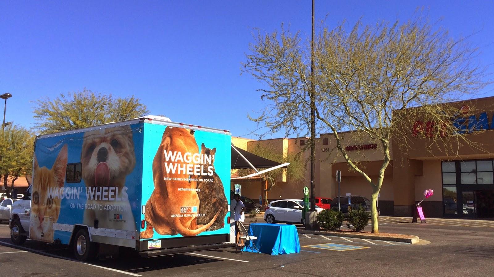 nonprofit spotlight arizona humane society waggin wheels