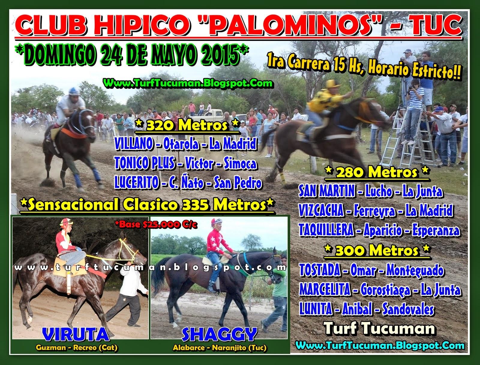 PROG PALOMINOS DGO 24