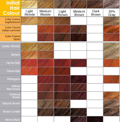 Loreal Hair Colour Chart 2012  Wwwproteckmachinerycom