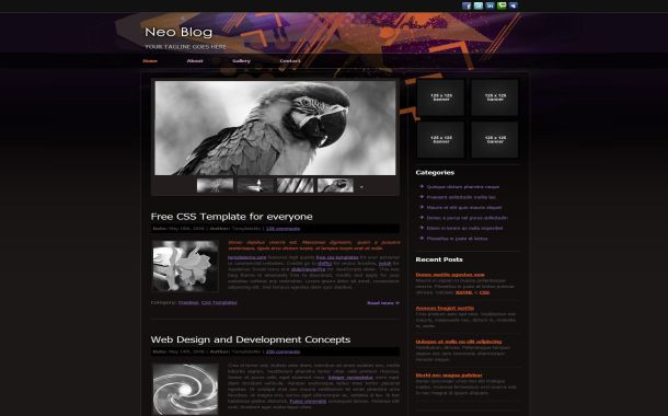 Free Black Grunge Purple CSS Website Template
