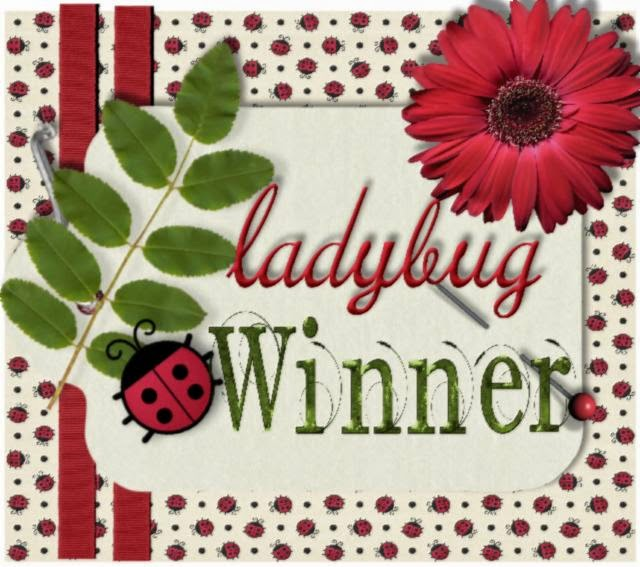 Ladybug Blog Challenge Winner