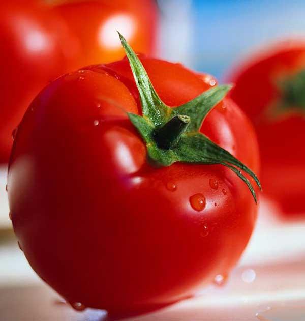 Kandungan dan Manfaat Tomat bagi kesehatan