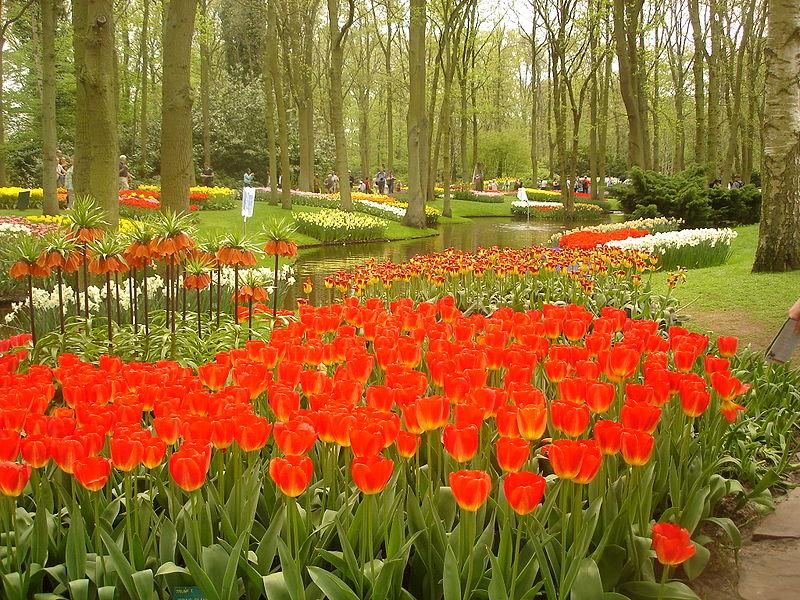 """flores cidade jardim:Confira algumas fotos desse descomunal e belo """"Jardim da Europa"""":"""