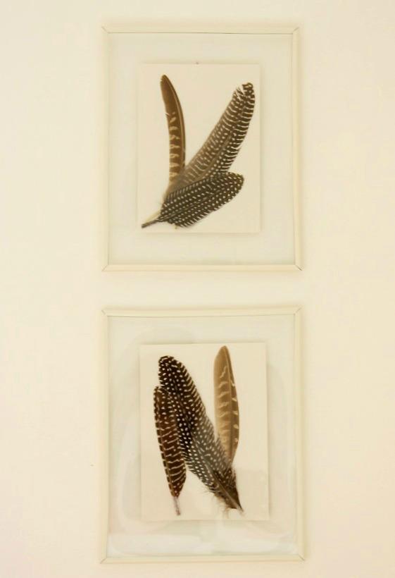 Meet Me in Philadelphia: Framed Feather Art