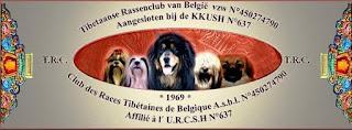 Tibetaanse Rassenclub