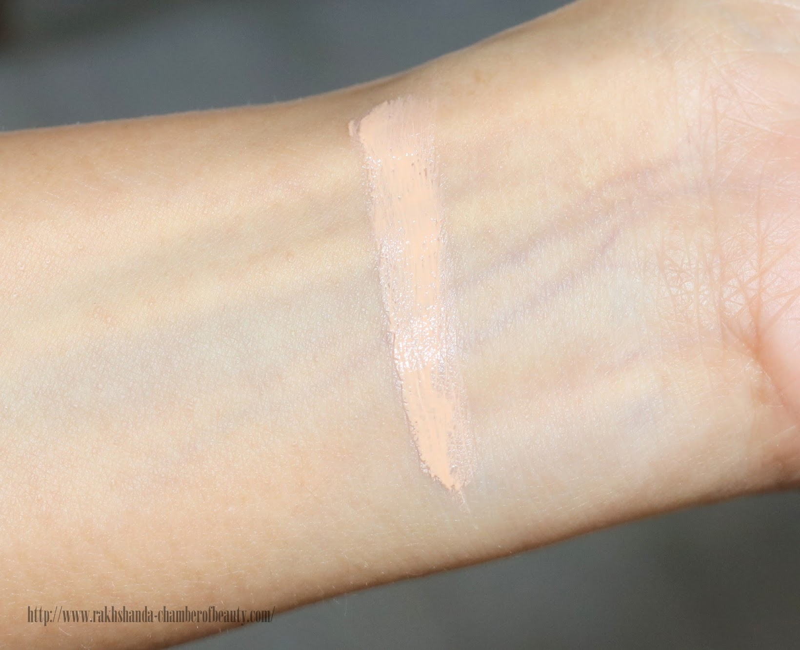 Rouge Bunny Rouge Naked Disguise Liquid Glide Concealer Review, Swatches