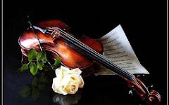 Música, estrofas y una flor.