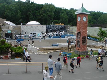 talk-hokkaido: Asahiyama Zoo in Asahikawa City!
