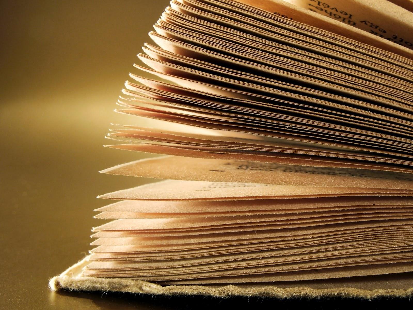 Libros en papel y algún e-book