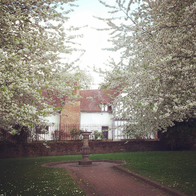 Medieval house surrounded by white blossoms in Walton-on-Thames